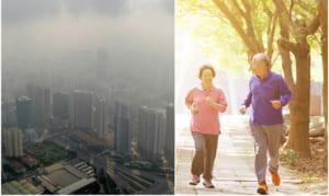 Ô nhiễm không khí là nguyên nhân gây các bệnh về tim mạch